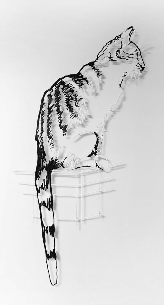 amimono-madame-le-chat